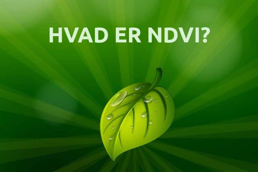 hvad er NDVI og hvor bruges det