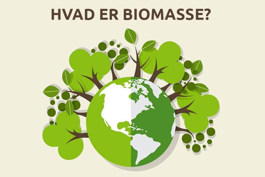 Hvad er biomasse