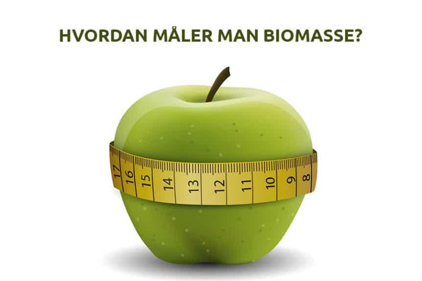 Biomasse måling